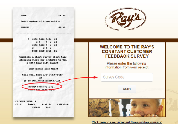 Ray Feedback Survey